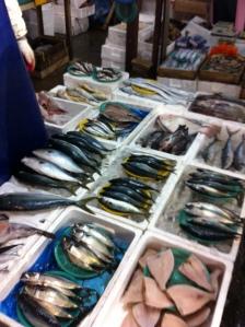 Fish, anyone?